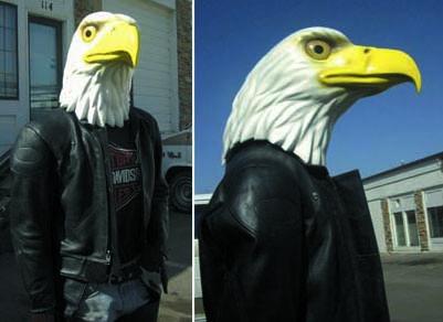 eagle-flyer
