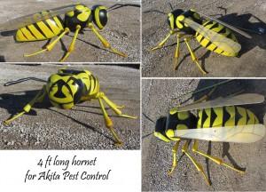 Akita Pest wasp